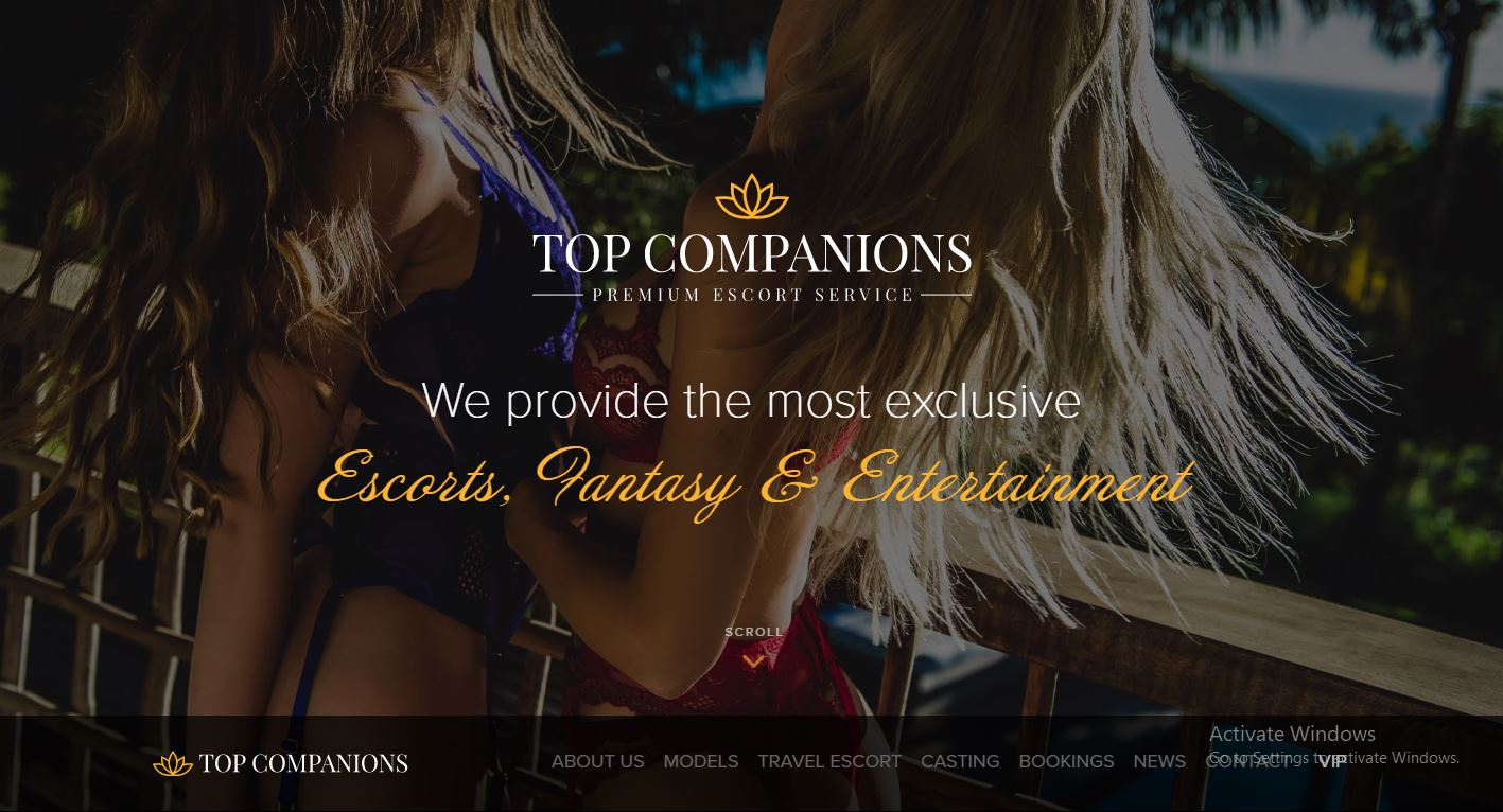 Top Companions review home page