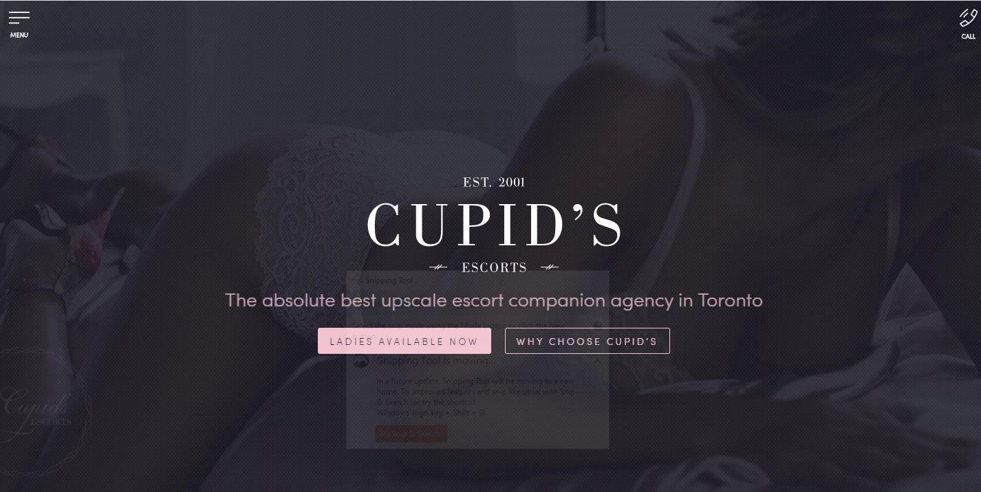 Cupid's Escorts Review homepage screenshot