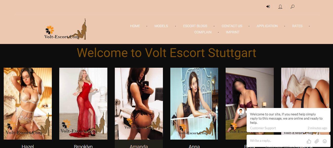 Volt Escort Stuttgart review homepage screenshot